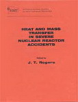 Heat and Mass Transfer in Severe Nuclear Reactor Accidents